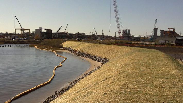 Shoreline and berm at Atlantic wood industries site (EPA).