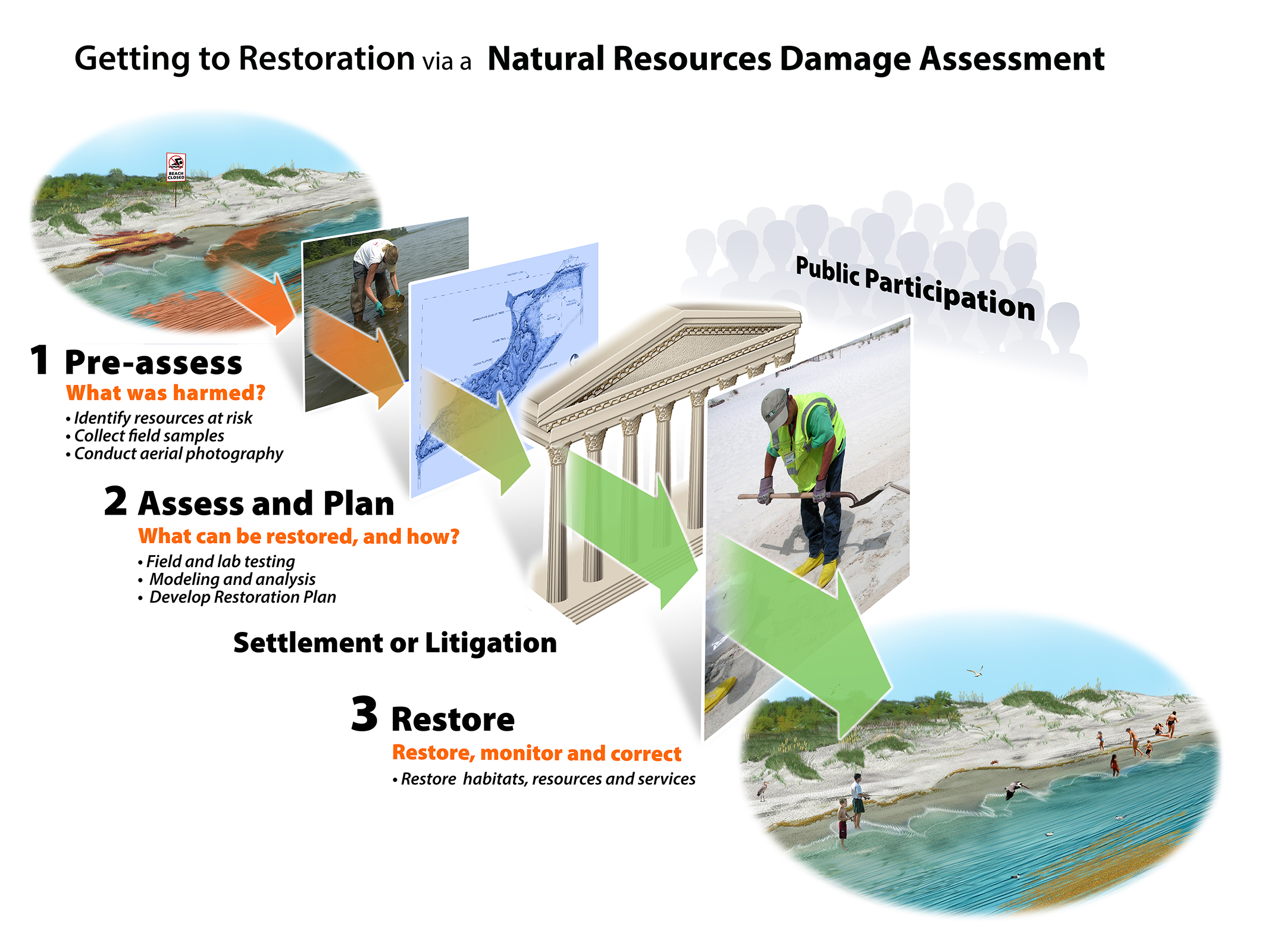The NRDA process, illustrated in a series of overlapping illustrations