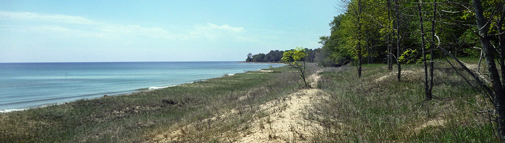 Amsterdam Dunes, a rare Great Lakes coastal dune and swale habitat, will be preserved as part of the proposed settlement.