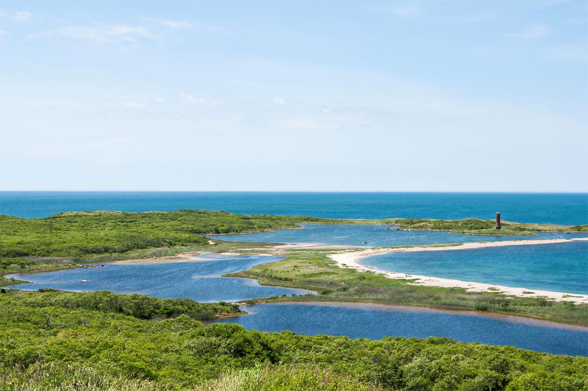 Cuttyhunk Island coastal habitat.