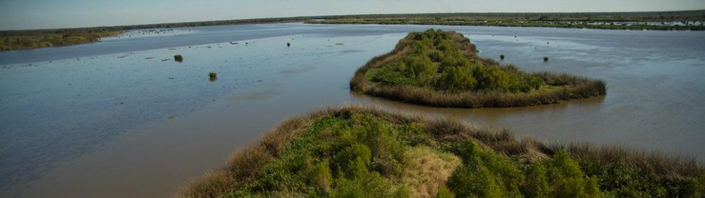 Aerial view of Louisiana shoreline