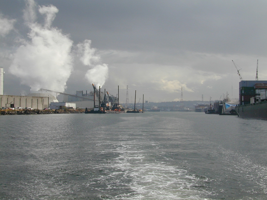 As a result of industrial activities along the Duwamish River in Seattle, Washington, NOAA is evaluating possible injuries to the benthic community (including flatfish) and salmon. (NOAA)