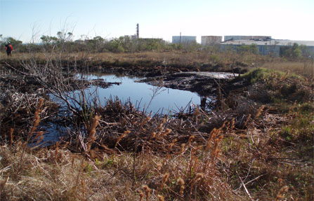 Oil pits dominated the Malone site prior to the cleanup.