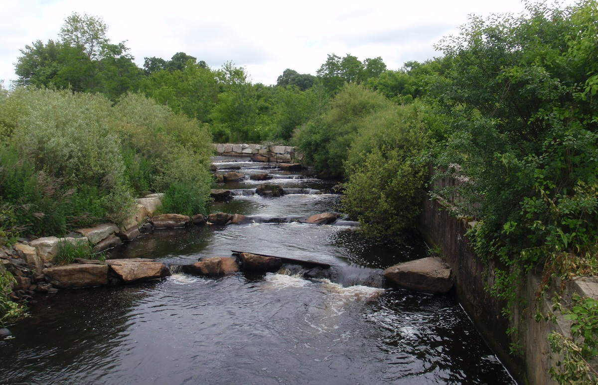 Nature-like fishway three-years post construction at the former Acushnet Sawmill Dam