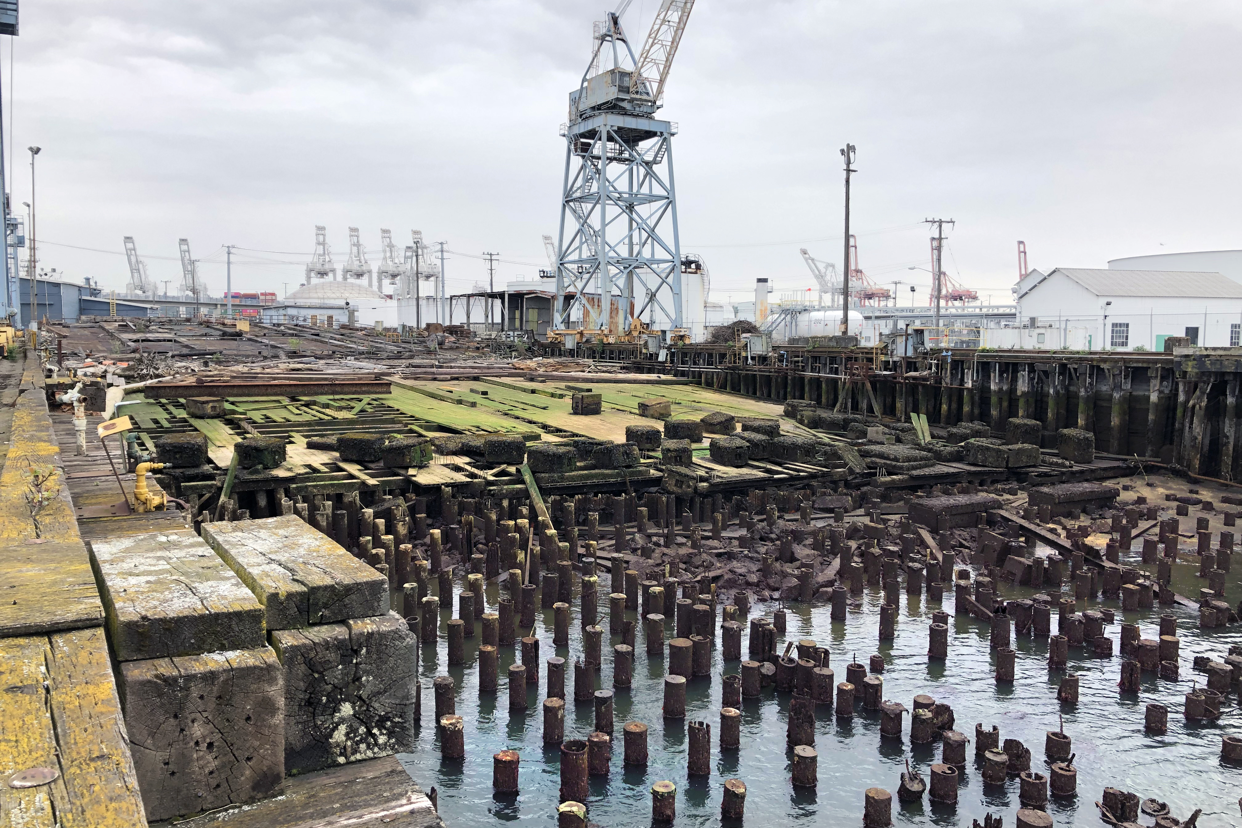 """""""Some of the thousands of pilings, and other structures proposed to be removed at the Vigor Facility site. Image: Floyd