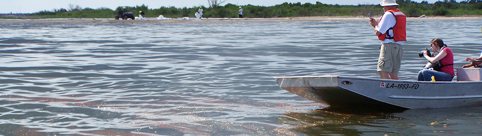 Deepwater Horizon Trustee staff in boats and on marsh shorelines look at oil on the water's surface.
