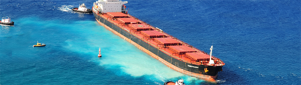 Pulverized corals cloud the water around grounded cargo ship VogeTrader