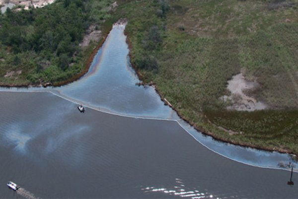 An oil spill partially combined by booms along a marshy shoreline.