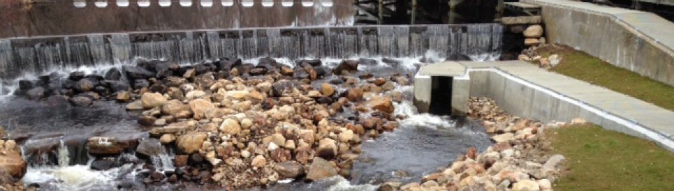Main Street dam and technical fishway and nature-like fishway weirs