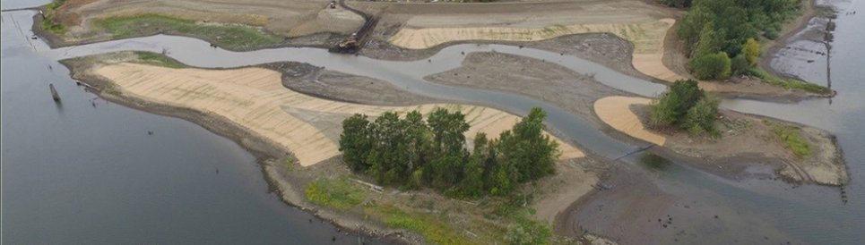 The Alder Creek restoration site on Oregon's Willamette River as construction nears completion in 2015. (Photo courtesy of Wildlands, Inc.)