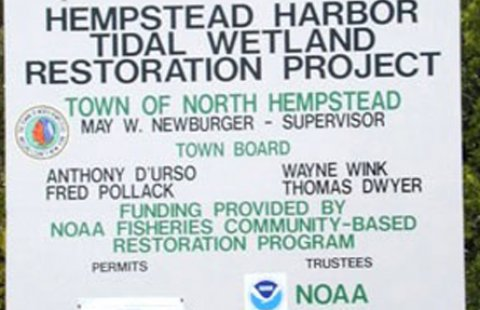 Hempstead Harbor successfully restored its salt marsh a few years ago, and will use the funds to remove invasive plants as part of its long term management efforts.
