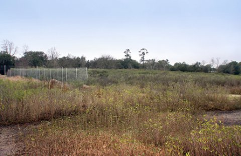 Pre-Construction at Noisette Creek. This former Naval Base golf course abuts Noisette Creek, off the Cooper River in Charleston South Carolina.