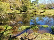 Inline farm pond on an unnamed tributary to Rockaway Creek