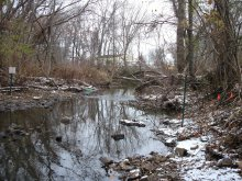 PCB-contaminated material was historically disposed of directly into adjacent wetlands and an unnamed stream.