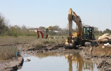 Backhoes digging to open channels to tidal flow in a southern wetland.