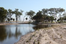 Restored habitat on MacDill Air Force Base. Non-native vegetation was removed, tidal reconnection was established with Tampa Bay, and the site was graded to wetland elevation and planted with native vegetation.