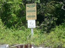"Sign that says, ""Forever Wild; Restricted Area; Heron Nesting Area; These Birds are Protected Under New York State and Federal Law"""