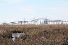 View of Rainbow Bridge from restored estuarine marsh.