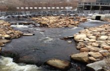 The weir and fishway allow increased adult herring passage to reach over 300 acres of upstream spawning grounds.