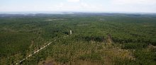 An aerial view of forest and estuary land on the Mississippi coast.