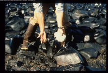 Cleanup worker on beach with hands covered in oil. Image credit: Alaska Public Archives