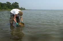 After the Chalk Point oil spill in Maryland in 2000, a NOAA scientist samples sediment to determine the impact on bottom-dwelling creatures.
