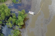 Two days after the spill occurred, oil had spread nearly 100 miles downriver, and carried into forested batture habitat making oil recovery and cleanup difficult.