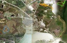 Color key: blue = Pierce Marsh restoration; orange = Swan Lake marsh injury; and green = Swan Lake restoration site.