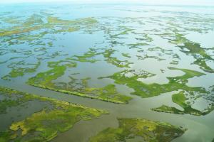 Aerial image of degraded wetlands in Louisiana's Barataria Bay