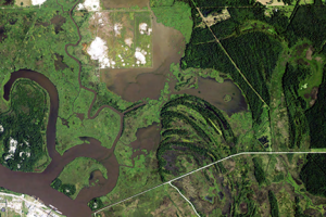 Aerial view of site (cleared area) and surrounding wetlands