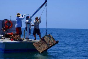 Crews on the surface pull a casita, an illegal structure used to lure in lobsters, from the waters of Florida Keys National Marine Sanctuary.