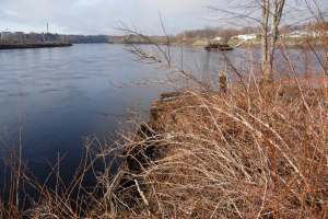 View of the Penobscot River looking just north of the site from the southeast side of the river.