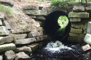 Water runs through a culvert under a road, but it's too high for fish to pass through and needs to be replaced.