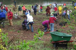 Volunteers conduct restoration along the Duwamish River in Washington.