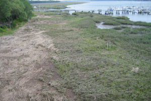 View of saltmarsh on edge of water at Port of Baldwin Mines, South Carolina.