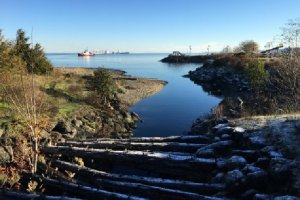 View from a small creek mouth out to Western Port Angeles Harbor -- a commercial ship is in the harbor.
